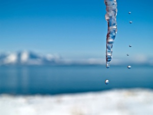 Picture of water dropping from icicles – Sunny day in Northern Norway