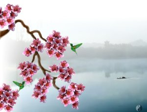 peach_blossom_early_mist_by_tswbstudio-d5ceugo
