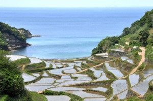 rice-terraces-17[2]