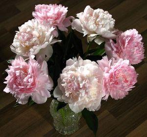 Bouquet_of_peonies_03