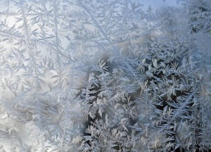 window frost ice flowers 25